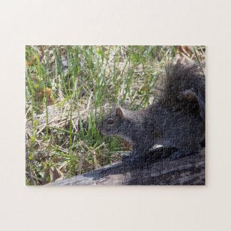 Squirrel on a Log Jigsaw Puzzle