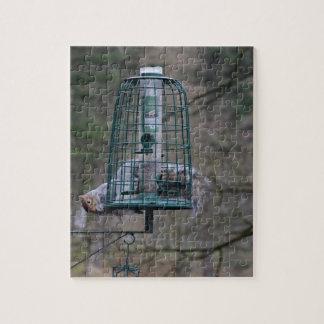 Squirrel on bird feeder jigsaw puzzle
