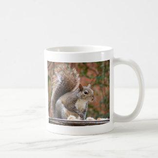 Squirrel on Feeder Coffee Mug
