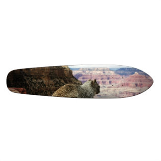 Squirrel Overlooking Grand Canyon, Arizona Skateboard