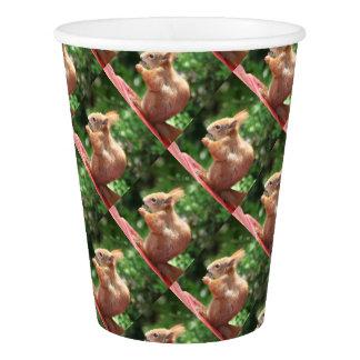 Squirrel Paper Cup