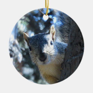 Squirrel Peeking Behind Tree - Ceramic Ornament