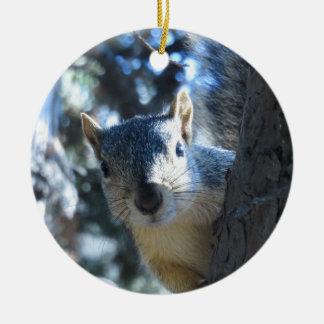Squirrel Peeking Behind Tree - Round Ceramic Ornament