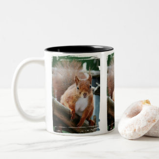 SQUIRREL - Photography Jean Louis Glineur Two-Tone Coffee Mug