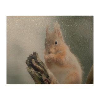 squirrel picture wood print