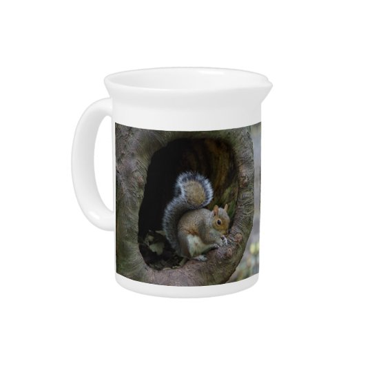Squirrel Pitcher