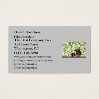 Squirrel Playing Piano Business Card