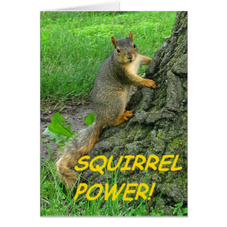 Squirrel Power! Card