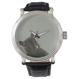 Squirrel Power Watch