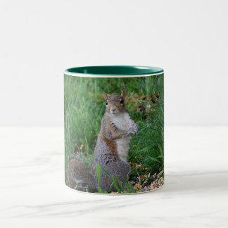 Squirrel Sitting Up Mug