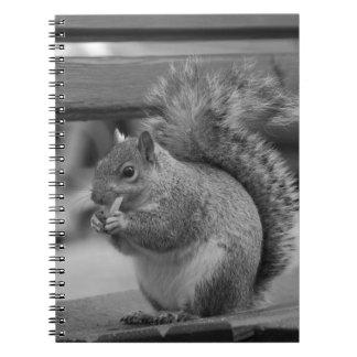 Squirrel Spiral Note Book
