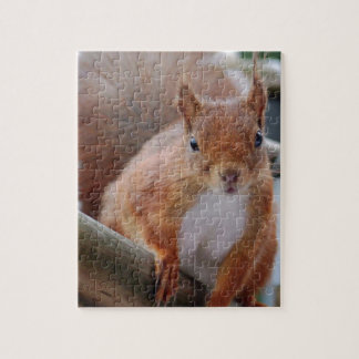 Squirrel squirrel Écureuil - Jean Louis Glineu Jigsaw Puzzle