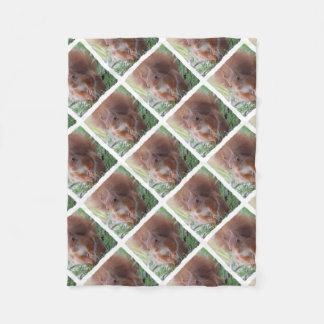 SQUIRREL SQUIRRELS by Jean Louis Glineur Fleece Blanket