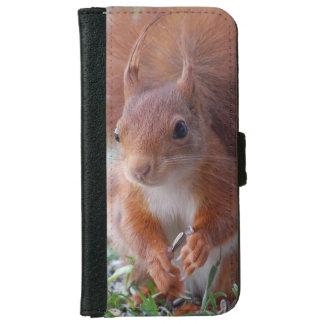 Squirrel ~ squirrels ~ Écureuil iPhone 6 Wallet Case
