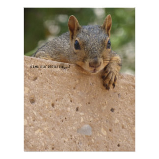 Squirrel Stationery Paper