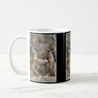 Squirrel Surprise Coffee Mug