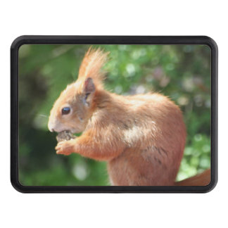 Squirrel Trailer Hitch Cover