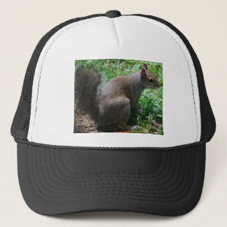 squirrel trucker hat