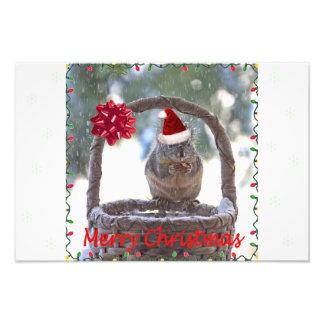 Squirrel Wearing Santa Hat Photo Art