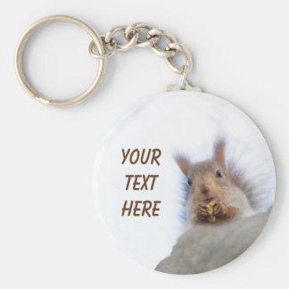 Squirrel with a walnut keychain