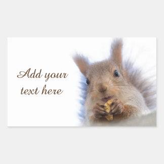 Squirrel with a walnut sticker