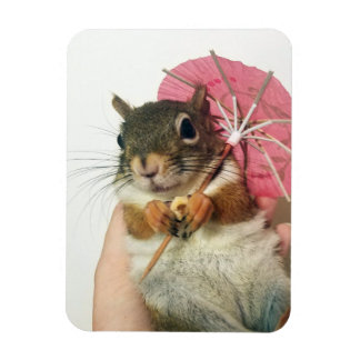 Squirrel with an umbrella magnet