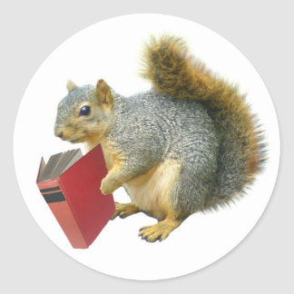 Squirrel with Book Classic Round Sticker