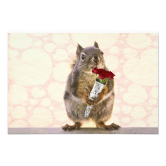 Squirrel with Bouquet of Red Roses Photo
