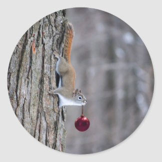Squirrel with Christmas ornament stickers