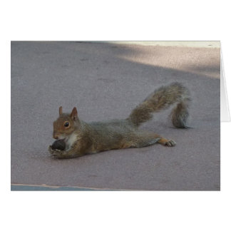 Squirrel with his nut card