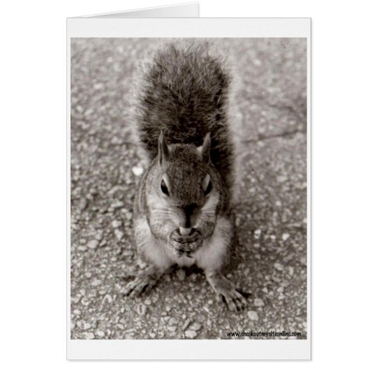 Squirrel with Nut Card