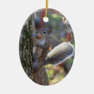Squirrel with Nut Ceramic Ornament