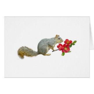 Squirrel with Quince Flowers Card