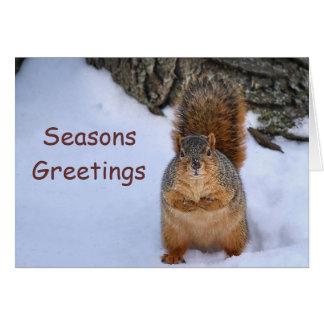 SquirrelChristmas Carte De Correspondance