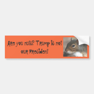 Squirrelly Are You Nuts!Trump is not our President Bumper Sticker