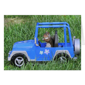 Squirrelly Driver. Card