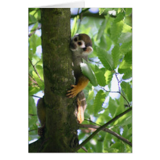 Squirrelmonkey Card