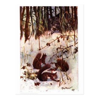 Squirrels and Predator Postcard