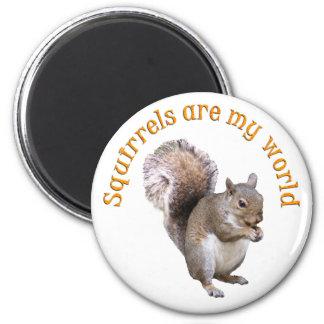 Squirrels are my World 2 Inch Round Magnet
