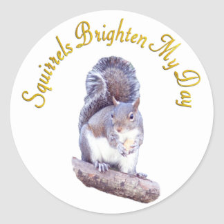 Squirrels Brighten My Day Classic Round Sticker