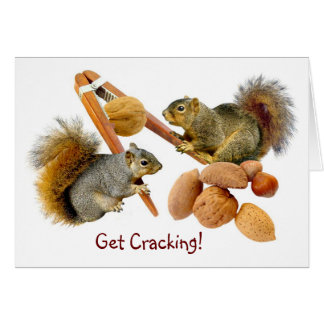 Squirrels Cracking Nuts Card