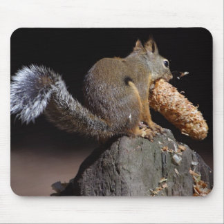 Squirrels Eating Tails Pinecones Mouse Pad