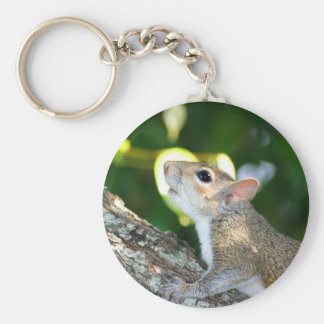 Squirrely! keychain