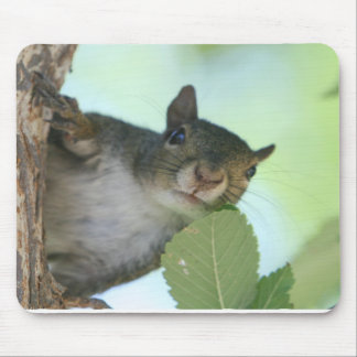SQUIRRELY MOUSE PAD