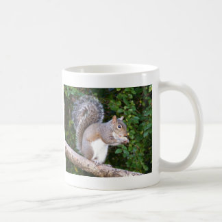 Squrrel Eating Bread Coffee Mug