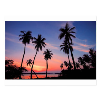 Sri Lanka Sunset Postcard