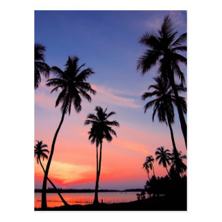 Sri Lanka Sunset Postcard