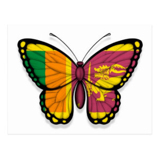 Sri Lankan Butterfly Flag Postcard