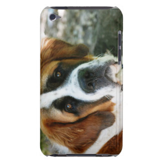 St Bernard Coque Barely There iPod