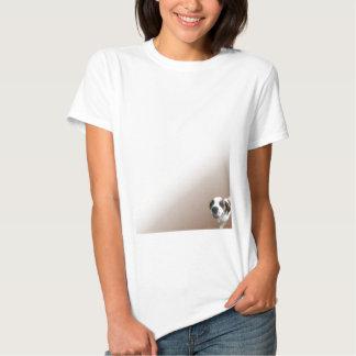 St Bernard de sourire sur Brown T Shirt